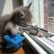 Sniper de Apartamento